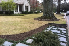 LW Sod, Lawn, Ground 10