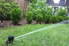 LW Irrigation 3