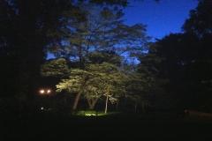 LW Lighting 1