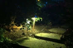 LW Lighting 5