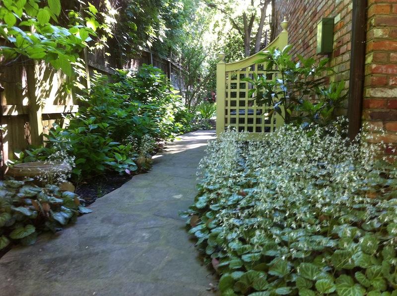 LW Sidewalks Paths 6