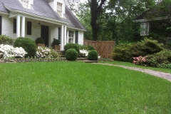 LW Sod, Lawn, Ground 7